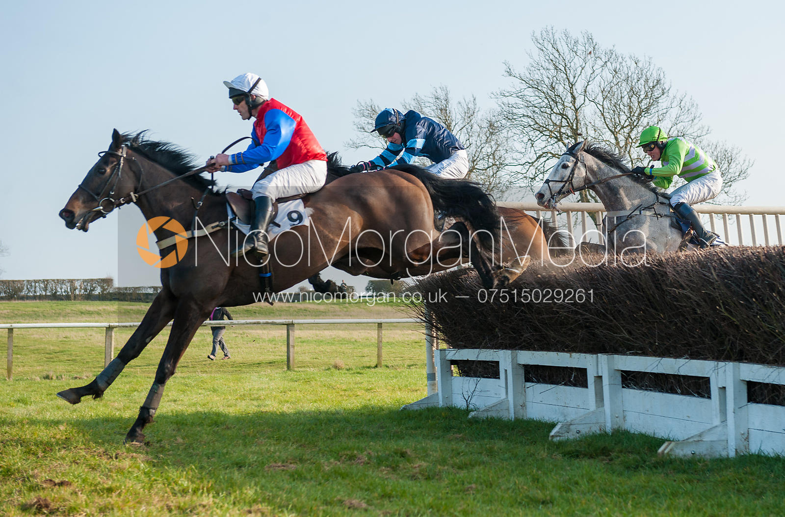 Panama Canal (Richard Armson) - Belvoir Hunt Point to Point 24/3/12