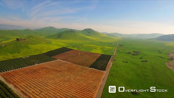 Farm Lands Pears Peach Apples Orange Fields Mountains Bakersfields California Wide Aerial Moving Forward Evening Sunset