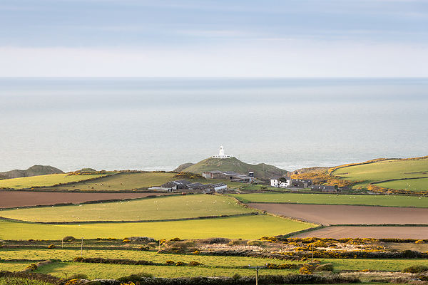 Pembrokeshire, Strumble Head