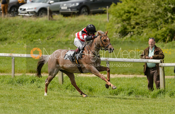 Pony Race 2 - The Melton Hunt Club Point-to-Point 2017