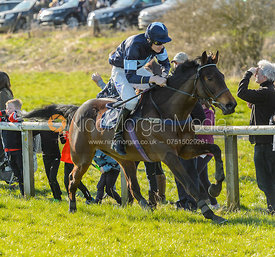 QUIZZACLE NOMAD (Tom Strawson) - Race 6 Open Maiden 3m - The Belvoir Point-to-point 2017