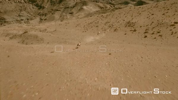 Aerial wide angle shot three gemsbuck running at great speed over desert rocky landscape, camera moves on one buck running Bo...