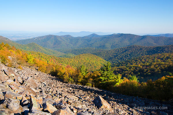 BLACK ROCK SUMMIT SHENANDOAH NATIONAL PARK VIRGINIA FALL COLORS