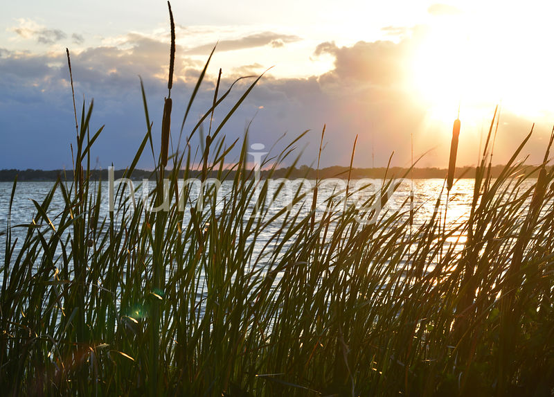Sunset Over Lake Ariana in Auburndale, Florida