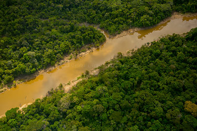 Aerial view of  Amazon Rainforest, and the Yavari Miri River, Peru, July 2015.