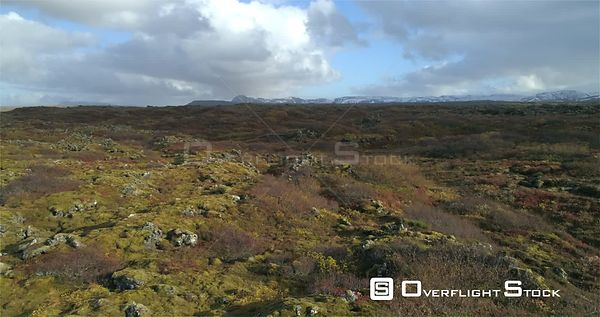 Flying Over Volcanic Moss and Bushes Heidmork Iceland Autumn Colors Footage Revealing Shot