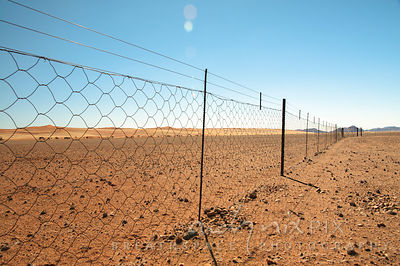 Barbed wire farm fence in desert