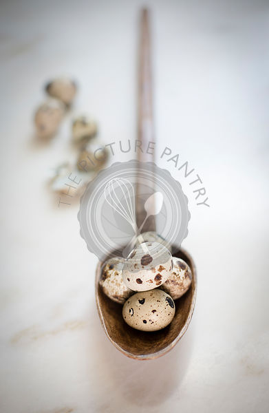 Quail eggs in a wooden ladle with broken shells on the side on a marble backdrop