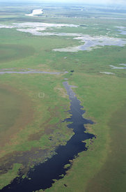 Aerial view of Sepik River floodplain, Irian Jaya / West Papua, Papua New Guinea