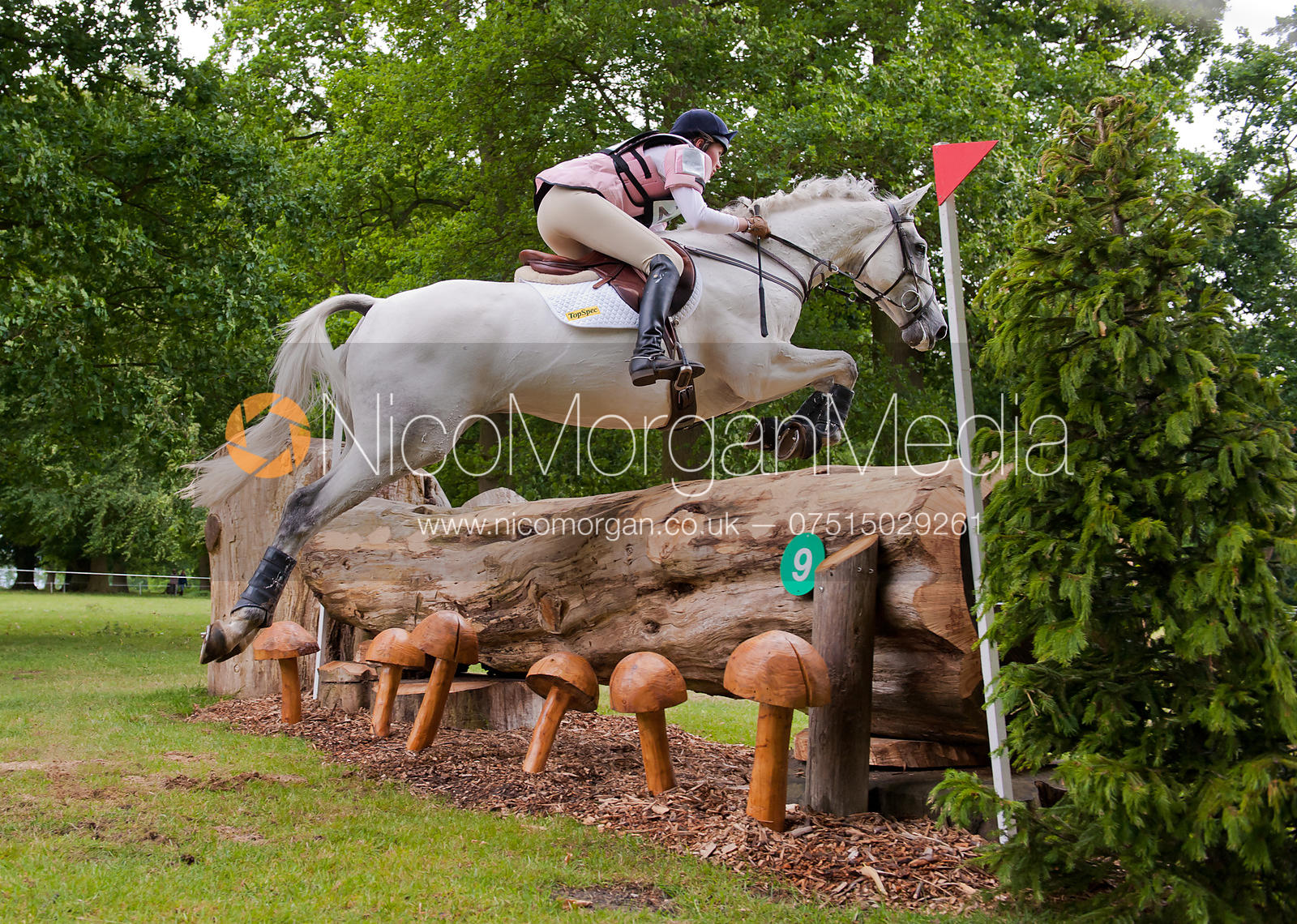 Rebecca Crosbie-Starling and Clifton Clicquot, Subaru Houghton International Horse Trials, May 2011
