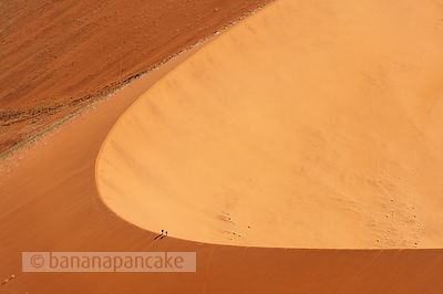 Tourists climb 'Big Daddy' sand dune, Namib-Naukluft Park, Namibia