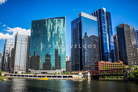 Picture of Chicago Cityscape Downtown City Buildings