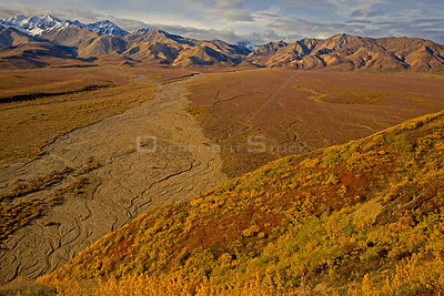 Aerial view of Polychrome Basin and braided, dried  riverbed in Denali National Park, Alaska, USA, autumn, September 2008