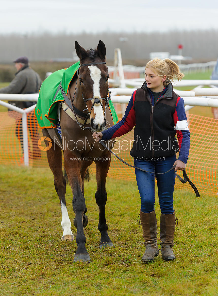 The Parade Ring - Race 3 - Novice Riders - Midlands Area Club Point-to-point 2017, Thorpe Lodge 29/1