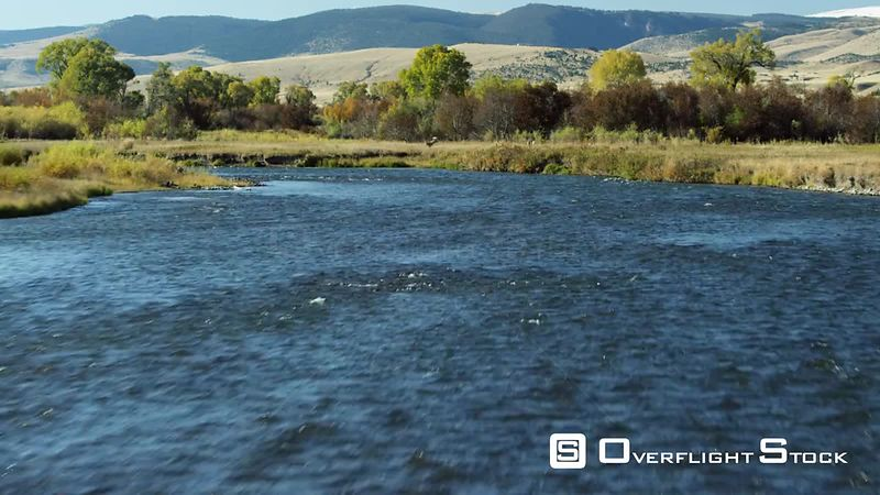The Madison river winds through the bright autumn colors of changing Cottonwood, scrub oak and grasses in the Madison Valley,...