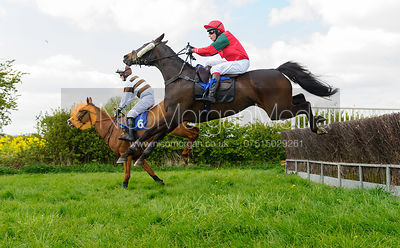 LOVE MANHATTAN (Tom Chatfeild-Roberts) - Race 3 Intermediate - South Notts Point-to-Point 2017