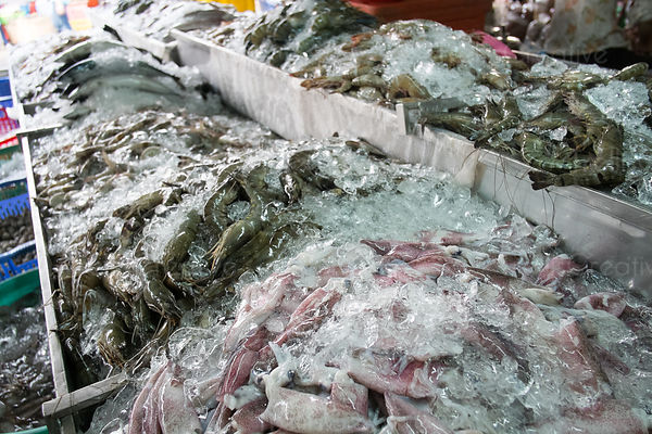 Variety of seafood covered with ice in an open air market in Cambodia