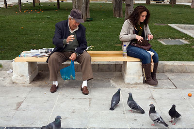 Greece - Athens - A man feeds pigeons whilst sharing a bench with a young woman in Syntagma Square