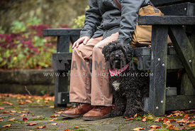 Man sat on a bench with dog by his side