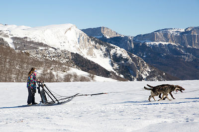 Club pour enfant de chien de traineau à Vassieux-en-Vercors, France / Dog sled club for kids in Vassieux-en-Vercors, France