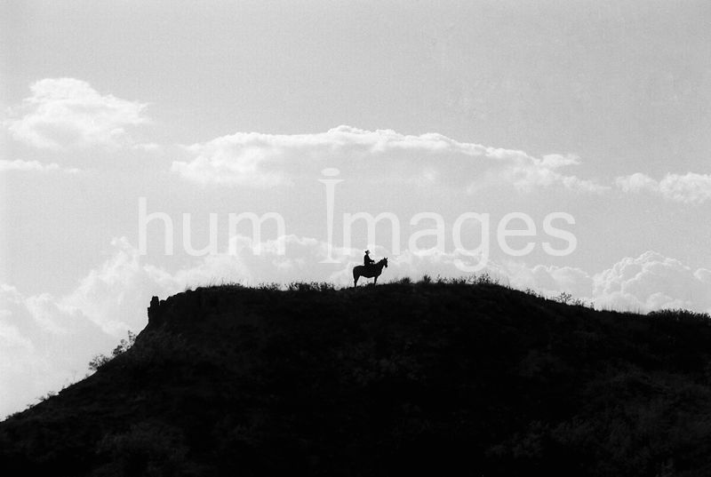 Cowboy atop a mesa on the NL Ranch north of Clarendon, TX (scan from b&w negative)