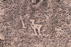 Detail of person holding a spear / harpoon geoglyph at Cerro Pintados , Region I , Chile