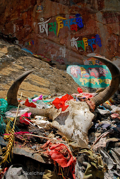 Buddhist shrine with yak skull, barley, flowers, and painted rock carvings of mantra Om Mani Padme Hum, along the sacred Ling...