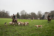 RA Hunt Boxing Day 2014
