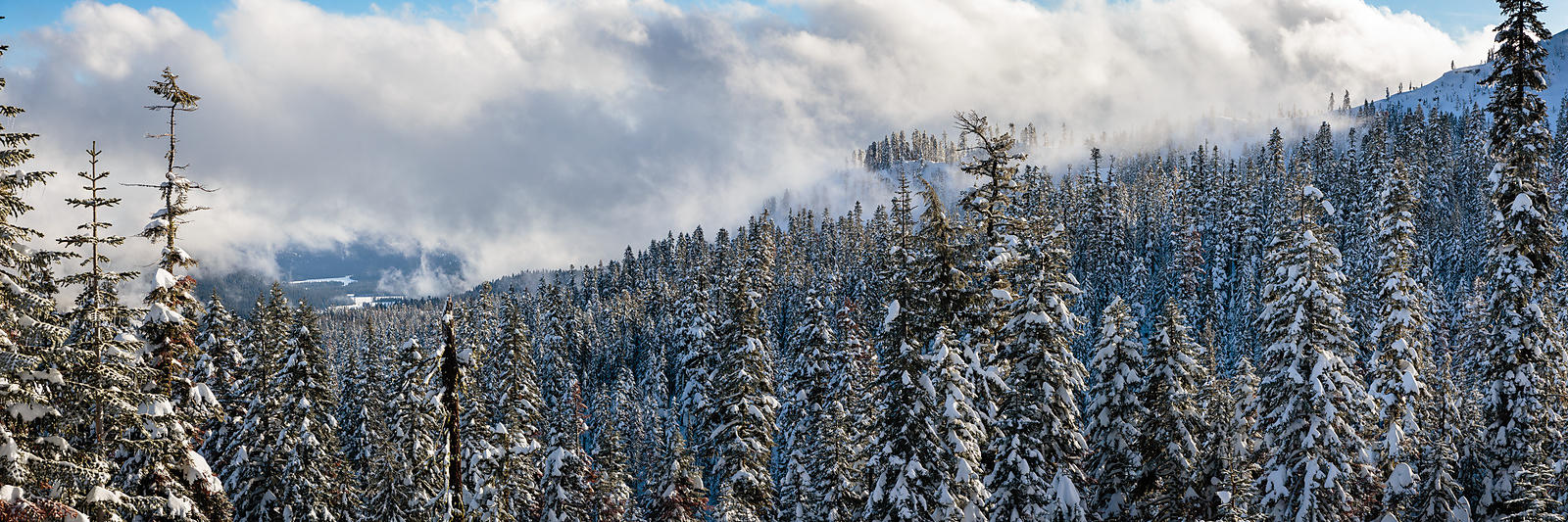 Owen_Roth_Photography-January_16_2016-Snow_Shoe-8530-Pano-00002