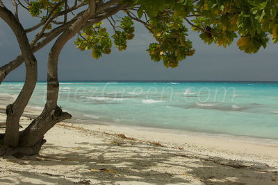 Sandy beach inside the Fakarava's atoll