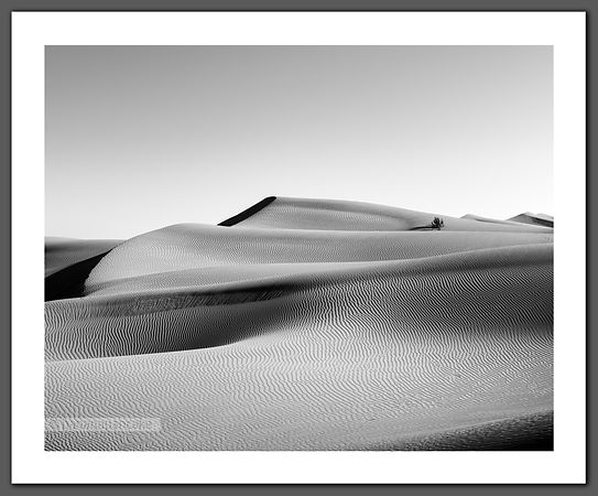 Rub' al Khali, Oman (BP6648)