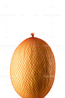 Yellow melon packed with plastica net and isolated on white background
