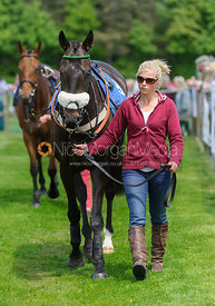 Georgie Strang leading up Paddycards - Race 2 - Meynell and South Staffs at Garthorpe, 2nd June 2013