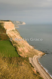 Dunscombe Cliff from Salcombe Hill, near Sidmouth, south Devon, England