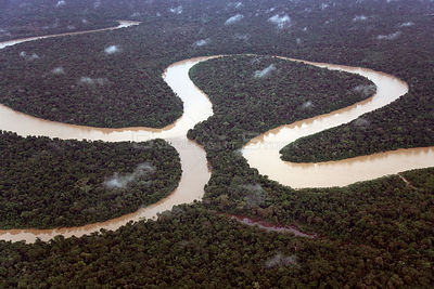 Aerial view of meander and tributary, Rio Yavari, Amazonia, Peru