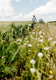 Little girl in a meadow 2
