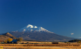 Barn and Mt. Shasta #2