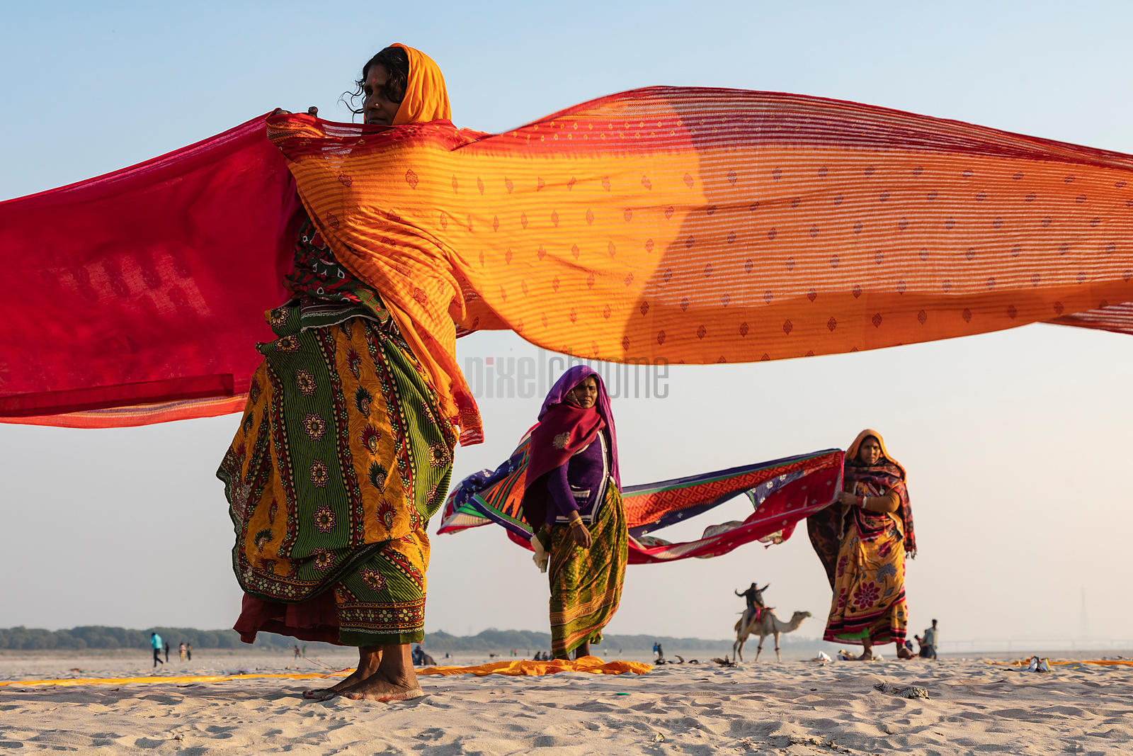 Women from Bihar Drying Saris on the Bank of the Ganges River
