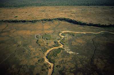 Aerial view of dried river bed during dry season, Katavi National Park, Tanzania