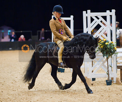 Sarah Challinor and Pumphill Buckthorn, 122cms Working Hunter Pony Class, Horse of the Year Show 2010