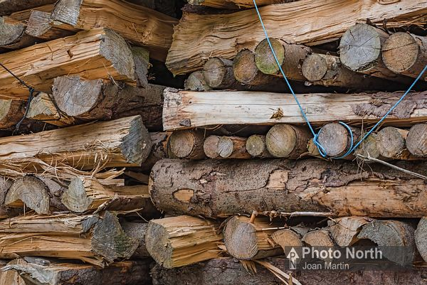 PINE 06A - Pine wood stack