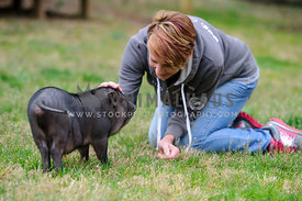 woman greeting baby pig