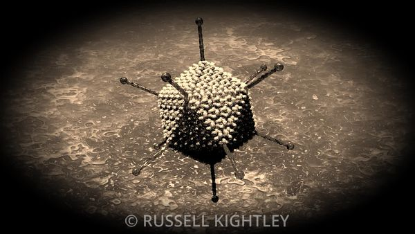 Adenovirus-particle-animation-FHD-Russell-Kightley_SEPIA_vignette