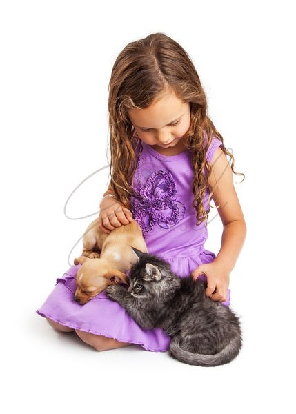 Little Girl Petting Puppy and Kitten