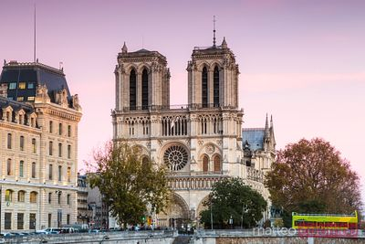 Pink sunset over Notre Dame cathedral, Paris, France