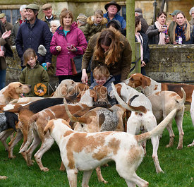 at the meet - The South Shropshire and Belvoir Hunts at Belvoir Castle 11/3/17
