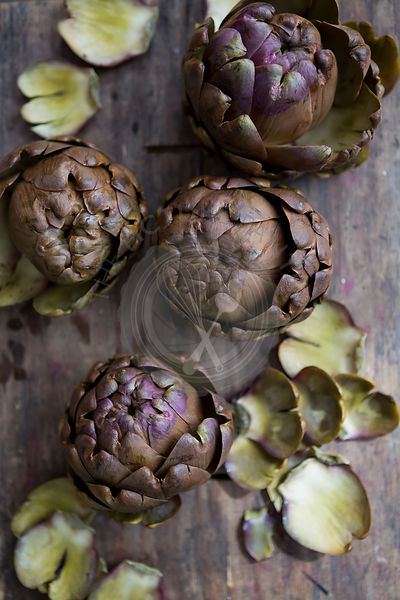 Still Life Cooked Artichoke Heads