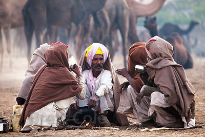 Camel herders drink tea at the Pushkar Camel Mela, Pushkar, Rajasthan, India.