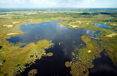 Aerial view of swamp and open pools in the Okavango Delta, UNESCO World Heritage Site, wide angle view taken from a light air...