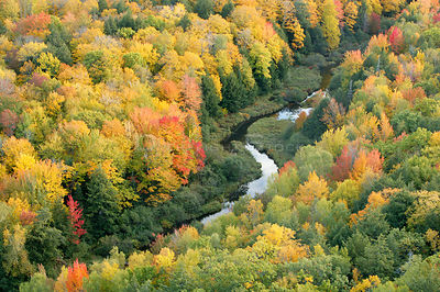 Aerial view of Little Carp River and early autumn woodland, Porcupine Mountains State Park, Upper Peninsula, Michigan, USA
